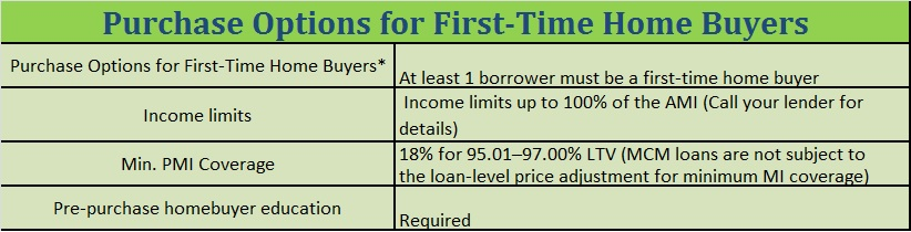 Purchase Options for First Time Home Buyers